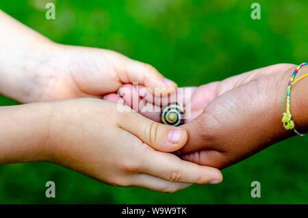 Junge und Mädchen verschiedener Rassen halten, eine lebendige Schnecke in der Hand. Junge ist kaukasisch und das Mädchen ist Schwarz. Konzeptionelle Foto über Pflege und Vielfalt. - Stockfoto