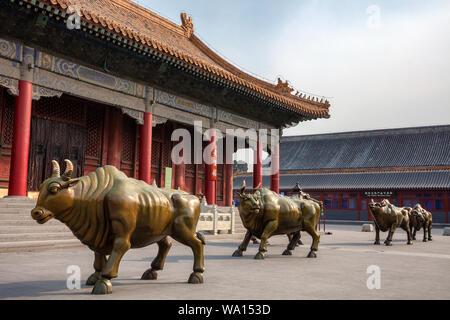 Die Aufrüstung der Beijing der Imperial Palace Museum - Stockfoto