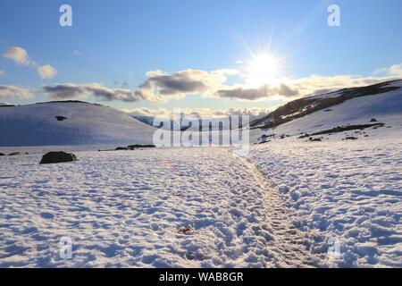 Wanderlust Konzept - Wandern Abenteuer in Hordaland, Norwegen. Snow Trail zu Trolltunga rock. - Stockfoto