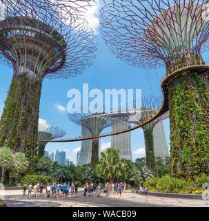 Supertree Grove in Gärten in der Bucht mit Marina Bay Sands, Singapur, Singapur - Stockfoto