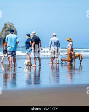 Ein Hund verliebte Paare, Männer und Frauen es vorziehen, Aktivitäten im Freien und gehen mit ihren Hunden am Ufer entlang der nordwestlichen Pazifischen Ozean genießen frische - Stockfoto