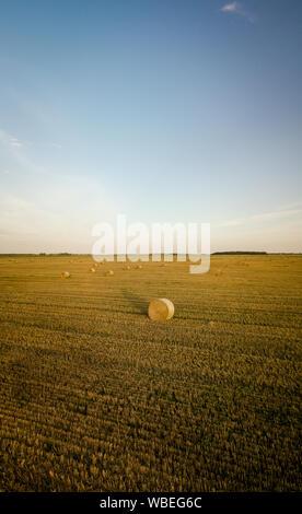 Landwirtschaftliches Feld voller Heu Rollen während der warmen Sommer Sonnenuntergang - Stockfoto