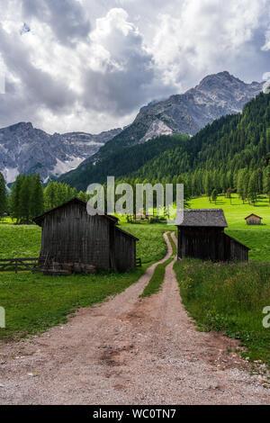 Wald Weg in den Dolomiten, Val Fischleintal