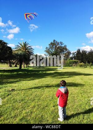 Ansicht der Rückseite des Jungen fliegenden Drachen gegen Himmel beim Stehen auf Wiese - Stockfoto