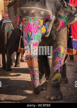 Lackierte Elefanten an Amer Fort, Jaipur, Rajasthan, Indien, Asien - Stockfoto