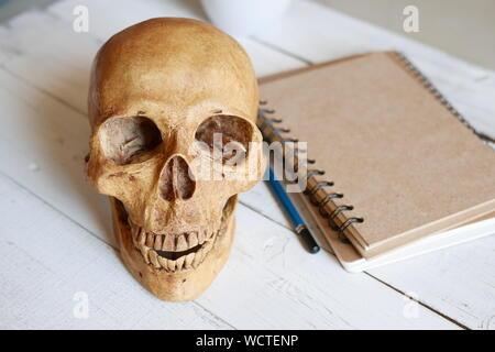 Close-up des Schädels mit Buch auf dem Tisch - Stockfoto