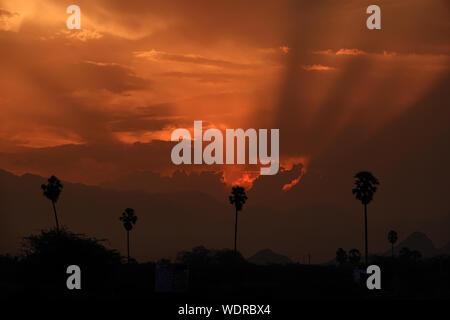 Indisches Dorf Blick auf den Sonnenuntergang, Silhouette der Palme am Goldenen Stunde - Stockfoto