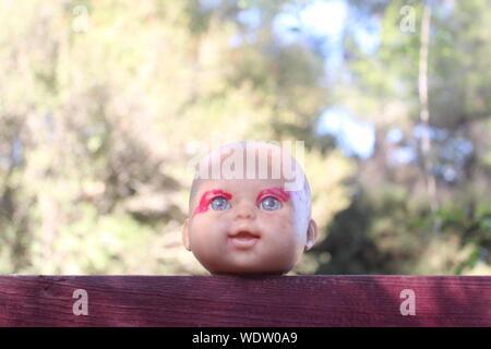 Puppe auf hölzernen Geländer gegen Bäume - Stockfoto