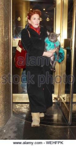 New York, NY-Melissa Gilbert in der NBC New York Live über Ihren neuen Hund Buch 'Daisy und Josephine' sprechen. Gilbert begann ihre Karriere als Schauspielerin in den späten 1960er Jahren in zahlreichen Werbespots und Guest starring Rollen im Fernsehen erscheinen. New York Times Bestseller Autor Melissa Gilbert macht Ihr Bild Buch Debüt mit ein Abrufen der Geschichte über ein schüchternes kleines Mädchen und ihr spunky Hund, Josephine! AKM-GSI Januar 22, 2014 - Stockfoto