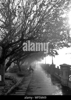 Mann sitzt auf der Bank an der Promenade bei nebligen Wetter - Stockfoto