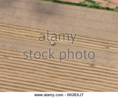 Kombinierte Harvester bei der Arbeit im Feld, Fylde, North West England, Großbritannien - Stockfoto