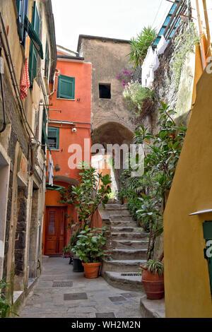Vernazza, die schmalen Straßen auf einer der fünf schönsten Dörfer der Cinque Terre an der italienischen Küste. - Stockfoto