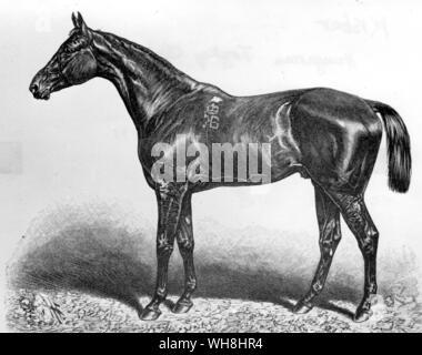 Die 1876 Epsom Derby Sieger war Ungarisch - der importierten englischer Eltern gezüchtet. Er wurde von Buccaneer, durch das Derby Sieger Wild Dayrell, der Herabgestiegen - Stockfoto