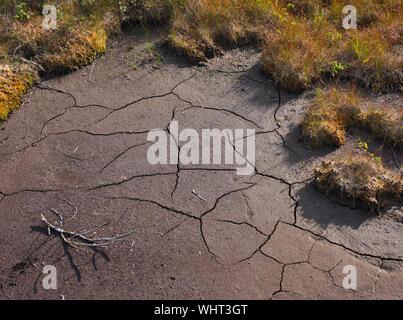 Rissige Erde in einer getrockneten Teich in Southeast Alaska im Sommer dürre. - Stockfoto