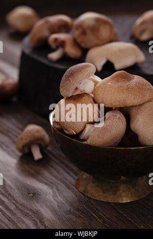 Kochen Imgredients. Shiitake-Pilze auf Holz. - Stockfoto