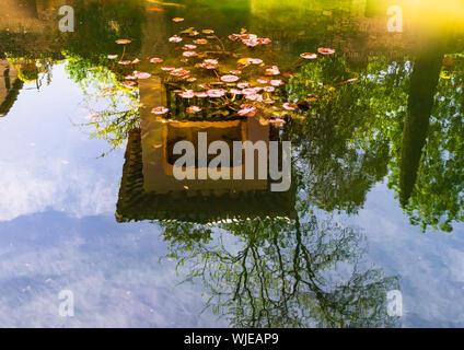 Granada, Spanien - 2019. Reflexion in den Teich Wasser der Patio de Los Arrayanes Gebäude in Alhambra, Andalusien. - Stockfoto