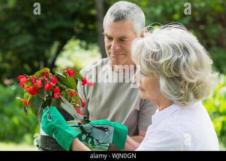 Seitenansicht eines Reifes Paar im Gartenbau tätig - Stockfoto