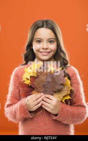 Glückliche kleine Mädchen mit Maple Leaves. Kleines Kind halten Sie die Blätter im Herbst. Sammeln von Laub. Cute glücklich lächelnde Kind spielen mit Blättern. Botanik Konzept. Natürliche Schätze. Farbe pigment. Veränderungen in der Natur. - Stockfoto
