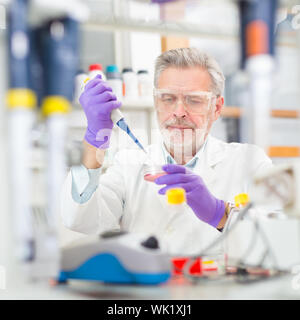 Leben Wissenschaftler forschen im Labor. Life Sciences umfassen Bereiche der Wissenschaft, die die wissenschaftliche Untersuchung von lebenden Organismen betreffen: microorganis - Stockfoto