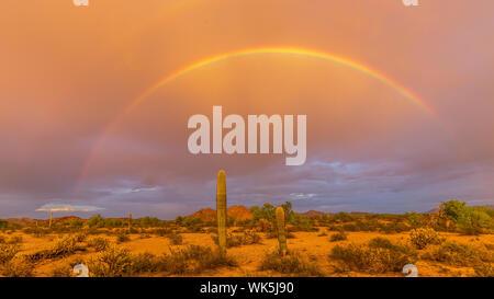 Malerische Aussicht auf Regenbogen über Landschaft gegen Himmel