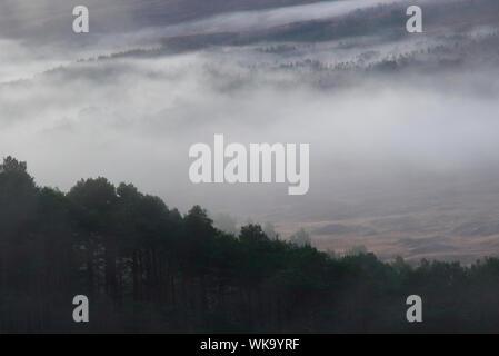 Nebel im Glen Cassley, Sutherland - Stockfoto