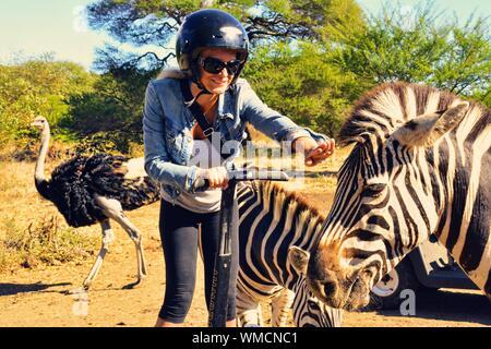 Frau Reiten Segway von Zebras auf Feld während der sonnigen Tag - Stockfoto