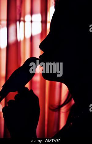 Close-up Silhouette Teenage Mädchen küssen Vogel - Stockfoto