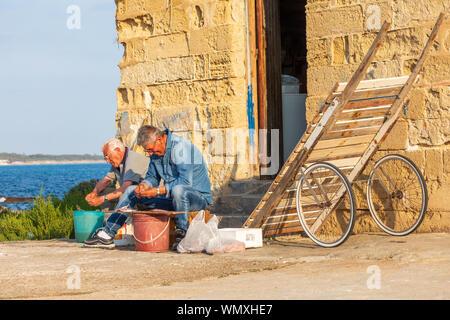 Italien, Apulien, Provinz Lecce, Gallipoli. Juni 03, 2019. Männer Reinigung Fisch am Hafen. - Stockfoto