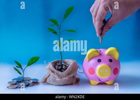 Zugeschnittenes Bild von Hand Münze in Piggy Bank - Stockfoto