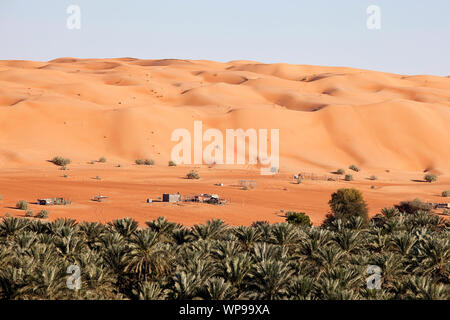 Beduinensiedlung mit Kamelen und Ziegen in die Wahiba Sands Wüste im Oman - Stockfoto
