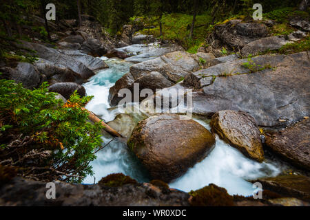 Malerischen Wasserfall und Mountain Creek durch den Wald laufen. Ribbon Falls Wanderweg Kananaskis Country Alberta Kanada - Stockfoto