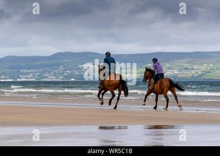 Mitfahrer der Ausübung ihrer Pferde auf benone Strand, Nordirland, Großbritannien. - Stockfoto