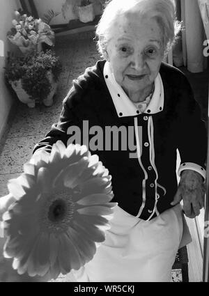 Hohe Betrachtungswinkel der älteren Frau, Sonnenblumen - Stockfoto