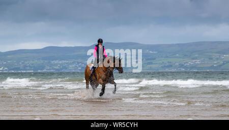 Mitfahrer der Ausübung ihrer Pferde am Rand von Meer am Strand Benone, Nordirland, Großbritannien. - Stockfoto