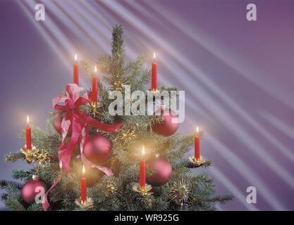 Beleuchteter Christbaum gegen farbigen Hintergrund - Stockfoto