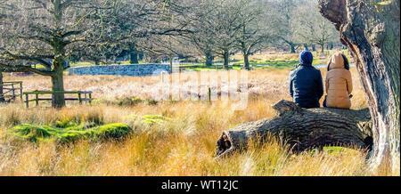 Panorama Leute sitzen auf Baumstamm in Bradgate Park - Stockfoto