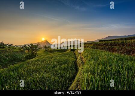 Malerische Aussicht auf den landwirtschaftlichen Bereich gegen Himmel bei Sonnenuntergang - Stockfoto