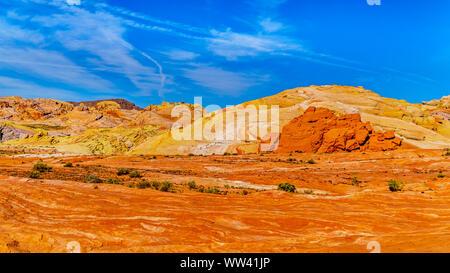 Die bunten Rot, Gelb und weiß gebändert Felsformationen der Brand Wave Rock auf dem Feuer WAVE-Spur im Valley of Fire State Park in Nevada, USA - Stockfoto