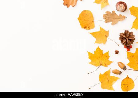 Trockene Blätter im Herbst, Vogelbeeren und Tannenzapfen - Stockfoto
