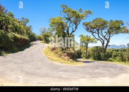 Trockenen tropischen Wald und Monsun Wald auf dem Weg zu den Horton Plains in Sri Lanka - Stockfoto