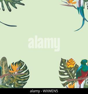 Nahtlose Muster von gefährdeten Arten Vögel Herrliche glänzende Quetzal sitzen auf einem Ast vor dem Hintergrund eines tropischen Pflanzen und Flo - Stockfoto