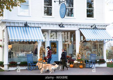 Die lokalen Menschen zu Fuß Hunde Vergangenheit des Landes Store auf der Main Street in Williston, Vermont, USA - Stockfoto