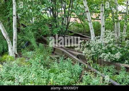Aspen Bäume und stillgelegten Gleise auf der High Line Park Gehweg auf der west Side von Manhattan, New York City, USA erhöhte - Stockfoto
