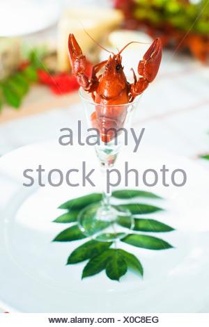 Krebse in Glas - Stockfoto