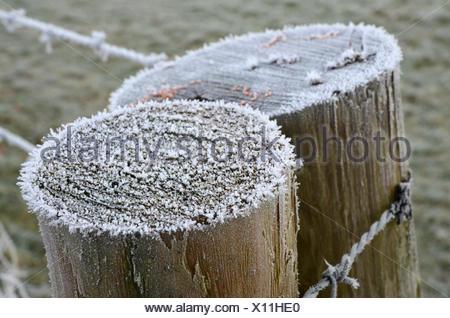 Stacheldrahtzaun In Frost bedeckt - Stockfoto