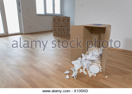 gebrochene tasse boden karton liegend stockfoto bild 55676295 alamy. Black Bedroom Furniture Sets. Home Design Ideas