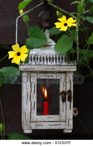Garten laterne kerze brennen stockfoto bild 123029409 alamy - Laterne garten kerze ...