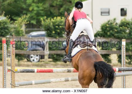 pferd und reiter pferd und reiterin stockfoto bild