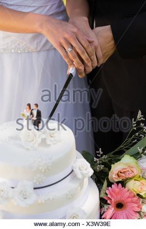 Mitte Erwachsenen Braut Und Brautigam Schneiden Hochzeitstorte