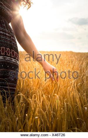Junge Frau im Gerstenfeld am Abend - Stockfoto